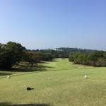 またまたゴルフ